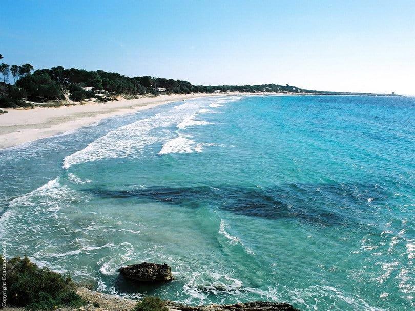 Cala Martina Beach Ibiza
