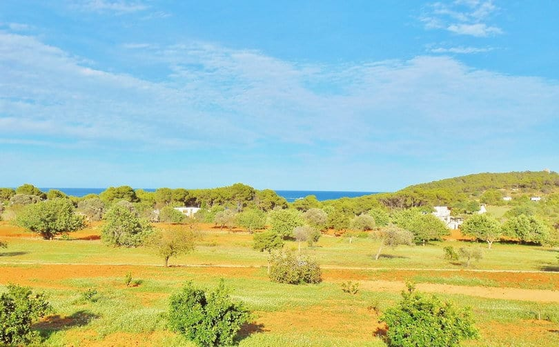 Sea view from Ecohouse at Opales Yoga retreat in Ibiza
