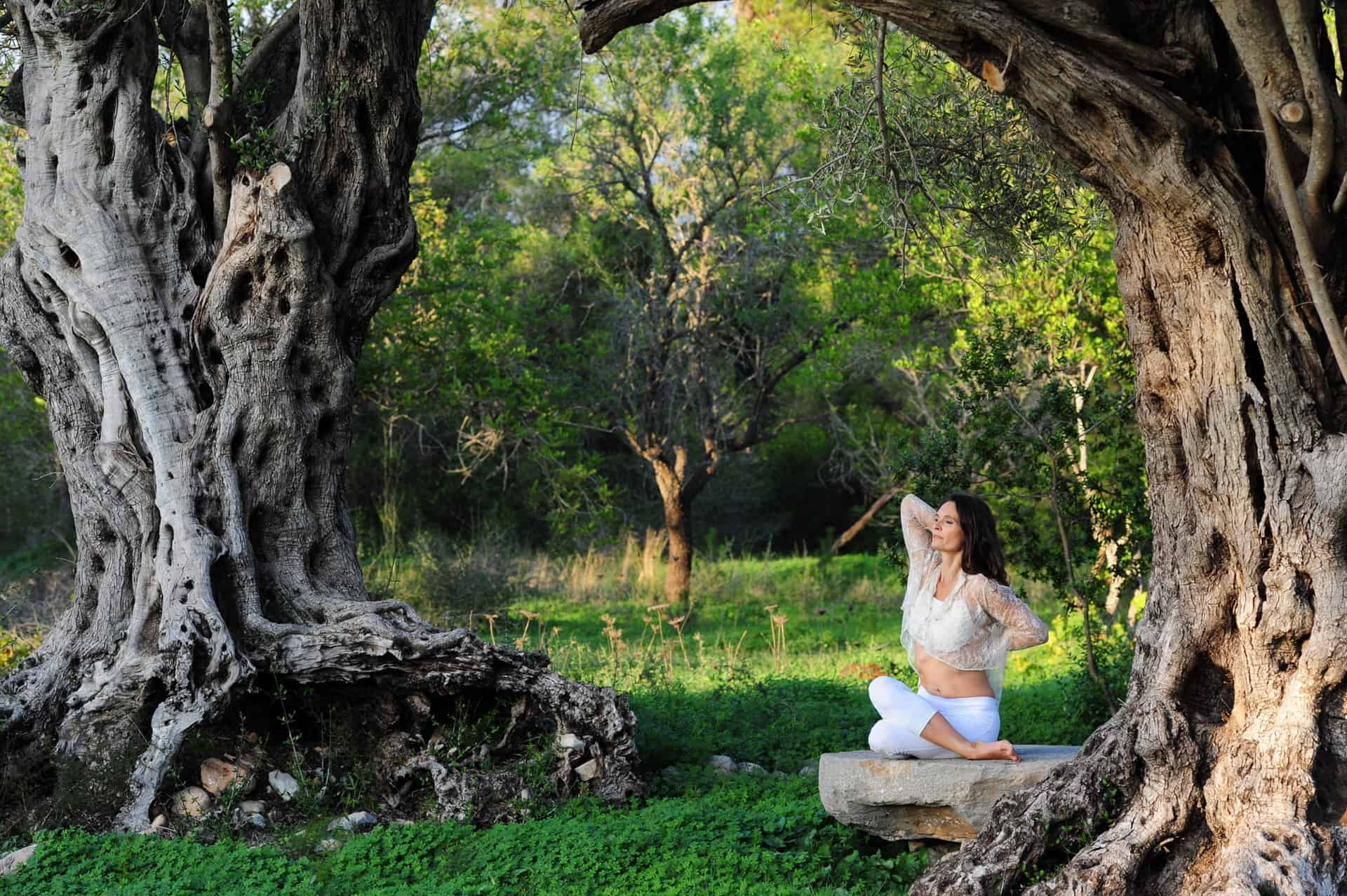 Serenity in Gomukhasana