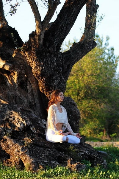 Opale in padmasana meditation pose by old olive tree Ibiza
